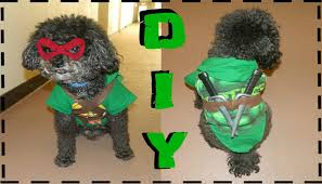 dog costumes spirit halloween diy teenage mutant ninja turtle dog costume no sew youtube