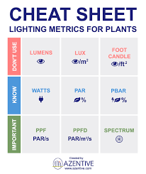 where to buy indoor grow lights how to choose the best indoor grow lights for plants