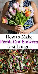 How To Draw A Vase Of Flowers 10 Tips To Make Fresh Cut Flowers Last Longer One Hundred
