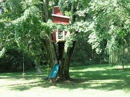 large tree houses with exotic wooden shape near the river for
