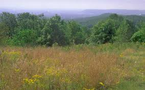 New Jersey mountains images High mountain park preserve the nature conservancy jpg