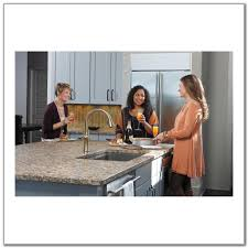 grohe kitchen faucet spray head replacement sinks and faucets