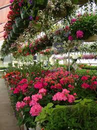 heavenly flowers greenhouse llc garden center west bend
