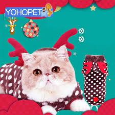 Cat Halloween Costumes Cats 742 Cat Costumes Images Cat Costumes Pet Cats