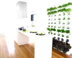 deco murale cuisine design murale cuisine design 6 avec d co et cuisin c3 a9coration blanc
