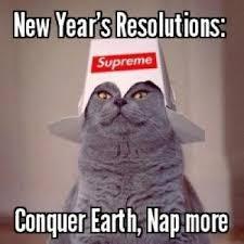 Happy New Year Cat Meme - happy new year the nerds uncanny