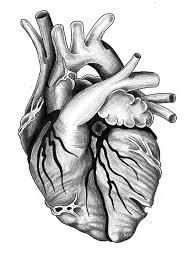 black heart by jontoogood on deviantart