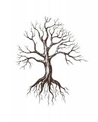 roots clipart empty tree pencil and in color roots clipart empty