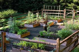 simple garden landscape traditional with vegetable garden wood fence