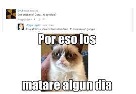 Gato Meme - seas mamon versi祿n gato meme by ladonacrazi memedroid