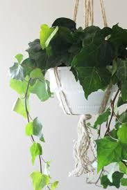 Diy Hanging Planter by Plastic Nursery Hanging Planter Diy Makeover Child At Heart Blog