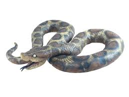 snakes party superstores