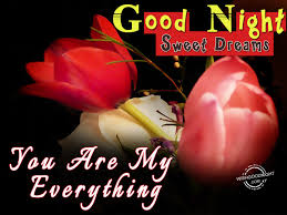 Love Good Night Quotes by Good Night My Love U2013 You Are My Everything Good Night Pictures