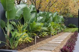 Tropical Rock Garden Kihara Landscapes Premier Japanese Garden Landscaper Melbourne