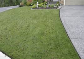Cutting Edge Lawn And Landscaping by Home The Cutting Edge