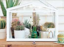 Windowsill Greenhouse Https I Pinimg Com 564x 3c 54 83 3c5483636b48f74