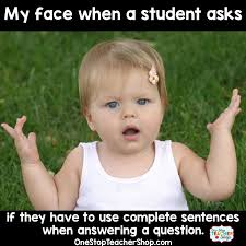 Meme Sentences - teacher humor one stop teacher shop