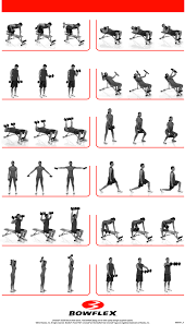 Bench Exercises With Dumbbells Dumbbell Workouts Health And Fitness Training