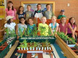 agriculture projects for students project work for students college homework help and