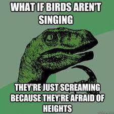 Meme What If - meme what if birds arent singing