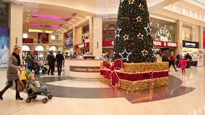 beautiful tree in shopping mall centre center last