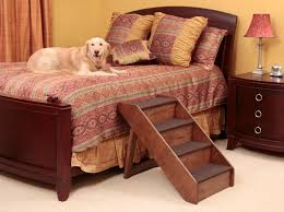 the benefits of small dog stairs and cat furniture