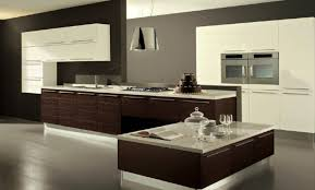 Unfinished Kitchen Cabinets Favorable Unfinished Kitchen Cabinets Tags Kitchen Cabinet
