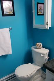 Color Schemes For Bathrooms by 20 Small Bathroom Before And Afters Hgtv Bathroom Decor