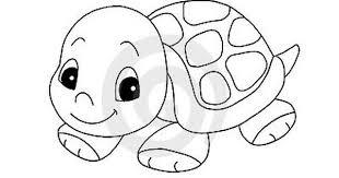 baby turtle clipart 55