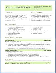 professional resumes format resume format experienced software engineer publicassets us