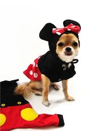 Minnie Mouse Costumes Halloween 169 Costumes Images Costumes Halloween Ideas