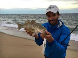 cape cod fishing blog