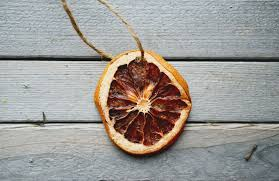 in real the of the everyday dried orange lemon