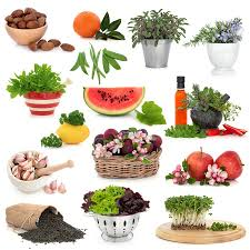 what really constitutes a healthy diet healthy options for a