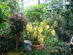 washington botanic garden foto photo kotanec cz zábava na