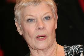 how to get judi dench hairstyle dame judi dench says the wealth gap hurts young actors