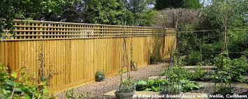 Fence Panels With Trellis Fence Trellis Images Reverse Search