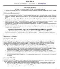 Technical Program Manager Resume Pleasurable Design Ideas Senior Project Manager Resume 4 Click