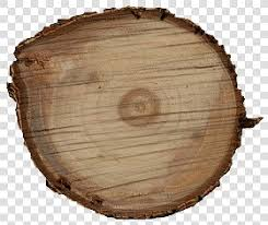 wood logs textures
