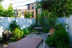 Nyc Backyard Staghorn Nyc Brooklyn Ny Blankslate Pages