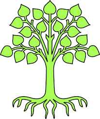 blank family tree clip clipart clipart clipartix