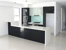 Pro Kitchen Design Kitchen10 Pro Design Kitchens