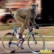 Bike Meme - bicycle meme generator best bicycle 2017