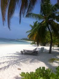 a beautiful white sand beach at kuredu island resort the maldives