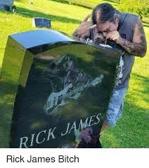 Rick James Memes - 25 best memes about rick james bitch rick james bitch memes