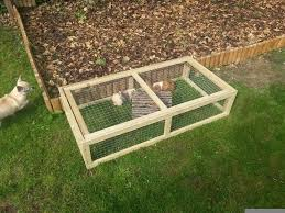 guineapig or tortoise run brand new in coventry west midlands