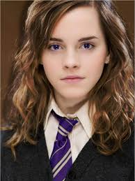 harry potter hermione hermione granger scopatore harry potter fanon wiki fandom