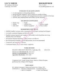 Resume Examples For It Jobs by Resume Sample Bookbinder
