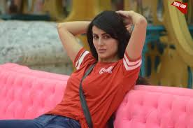 Top Controversies Of Former Bigg Boss Contestant Mandana - omg ex bigg boss contestant mandana karimi goes topless in her