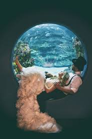 best 25 wedding bubbles ideas best 25 aquarium wedding ideas on fish wedding